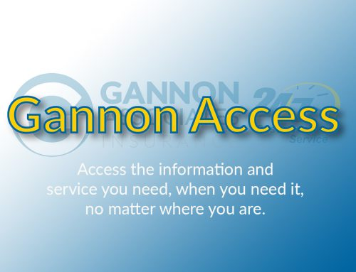 Introducing Gannon Access